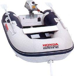 Honda Marine T25 SE1 BG