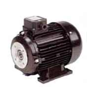 Ηλεκτροκινητήρας ειδικού τύπου τριφασικός , φλατζωτός, μέσα άξονα , 2800 στροφών 3 HP
